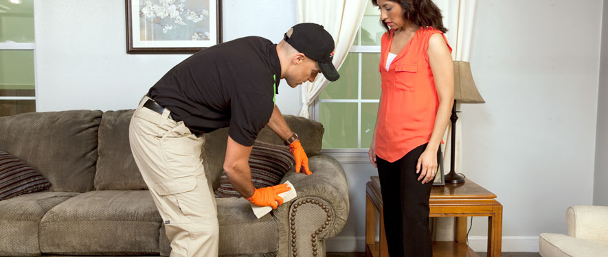 Santa Ana, CA carpet upholstery cleaning